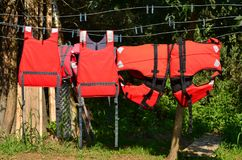 Red life jackets drying. Freshly washed red life jackets hanging on clothesline outdoor and drying Royalty Free Stock Photos
