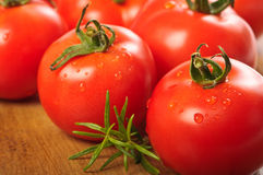 Freshly Washed Tomatoes Stock Photography