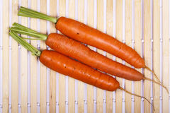Freshly washed whole carrots Stock Images