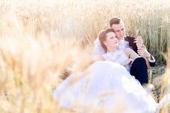 Freshly wed bride and groom posing in wheat field. Stock Photos