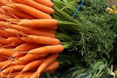Freshly whole carrots Royalty Free Stock Image