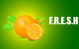 Freshness Royalty Free Stock Image