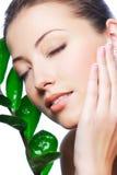 Freshness Stock Image