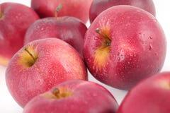 Freshness apple Royalty Free Stock Images