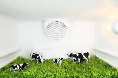 Freshness concept Stock Image