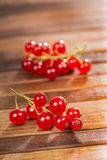 Freshness currant Stock Images