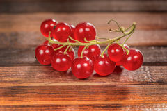 Freshness currant Royalty Free Stock Image