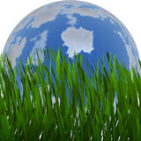 Freshness green grass of earth planet shape backgrounds Stock Photo