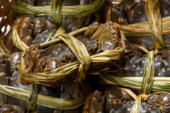 Freshness hairy crabs Royalty Free Stock Images