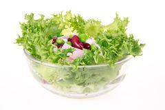 Freshness lettuce bean and corn salad isolated Stock Photography