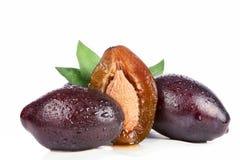 Freshness plums. Isolated on white background Royalty Free Stock Image