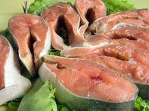 Freshness red fish Stock Image