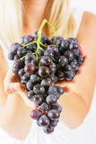 Freshness red grapes Royalty Free Stock Photos