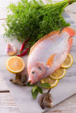 Freshness reddens the Nile Tilapia fish Stock Photo