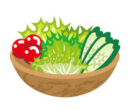 Freshness Salad. Simple symbolic cartoon Illustration stock illustration