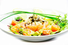Freshness salmon salad Royalty Free Stock Photos
