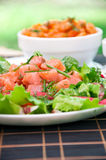 Freshness Salmon Salad Royalty Free Stock Photo