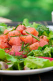 Freshness Salmon Salad Royalty Free Stock Image