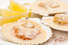 Freshness scallop with lemon Royalty Free Stock Photography