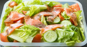 Freshness Slice Smoked Salmon Salad Stock Image