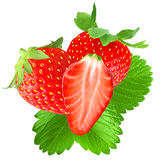 Freshness strawberries. Isolated fruit. Two strawberries and half with leaf isolated on white background as package design element stock images