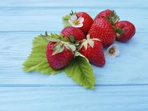 Freshness organic strawberry healthy antioxidant farming summer harvest on a blue wooden background. Freshness strawberry whole organic blue wooden background royalty free stock image