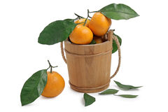 Freshness tangerine Stock Photo