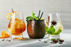 Freshness Tasty Cocktail royalty free stock photo