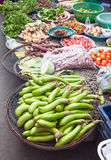 Freshness vegetables Stock Image