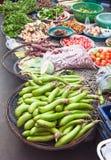 Freshness vegetables Stock Image