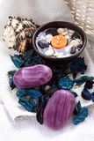 Freshness With Soaps And Potpourri Stock Images