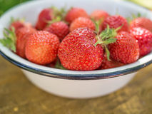 Freshs strawberry. Royalty Free Stock Photography