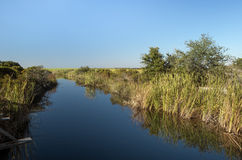 Freshwater canal at Ft. Pickens, Florida stock images