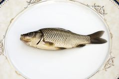 Freshwater carp. In a porcelain dish Royalty Free Stock Images