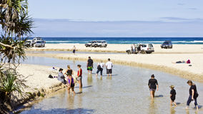 A freshwater creek on Fraser Island. Tourists enjoying a freshwater creek on Fraser Island which is the World's largest sand island in Queensland, Australia Stock Photo