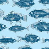 Freshwater fish endless pattern, vector nature and marine theme. Seamless tiling. Seafood wallpaper, zoology idea background Stock Image