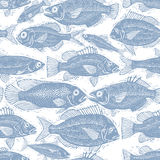 Freshwater fish endless pattern, vector nature and marine theme. Seamless tiling. Seafood wallpaper, zoology idea background Royalty Free Stock Image