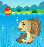 Freshwater fish theme image 1 Royalty Free Stock Photography