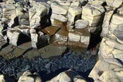 Freshwater lagoon Stock Photography