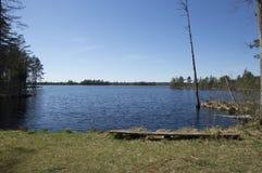 Freshwater Lake, Estonia. A freshwater lake, surrounded by woodland, in Nigula Bog, Estonia Royalty Free Stock Photo