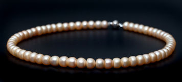 Freshwater pearl necklace Royalty Free Stock Photos