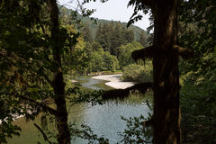 Freshwater River with Green Forest and Rocky Shore Royalty Free Stock Photo