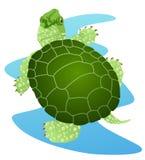 Freshwater Turtle Stock Photography