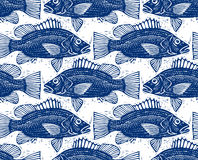 Freshwater vector fish endless pattern, nature and marine theme Stock Images
