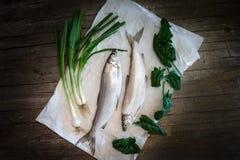 Freshwater Whitefish (Coregonus lavaretus) Stock Image