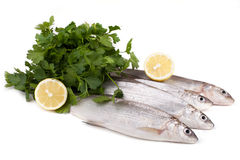 Freshwater Whitefish. Raw European whitefish Coregonus lavaretus with lemon and parsley, isolated on white background Stock Photo