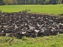 Freshy plowed field, Austria. Freshly plowed field in spring. Salzburg, Austria, Europe Royalty Free Stock Photo
