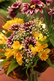 Fresia Blumenstrauß Lizenzfreie Stockfotos