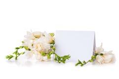 Fresia y una tarjeta en blanco Imagen de archivo