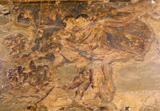 Fresque au château de désert de Quseir (Qasr) Amra près d'Amman, Jordanie Images libres de droits